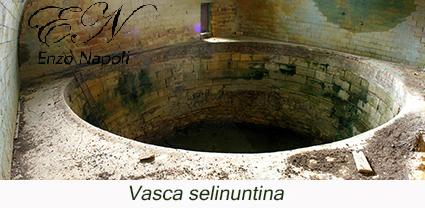 Vasca selinuntina (1)