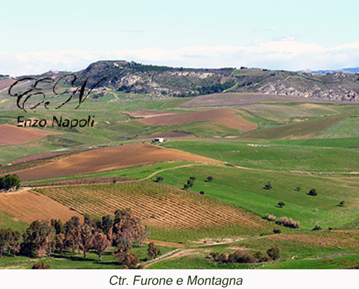 Ctr. Furone e Montagna (1)