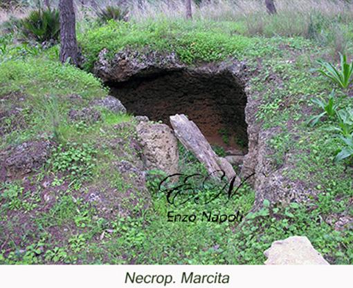 Necrop. Marcita 1