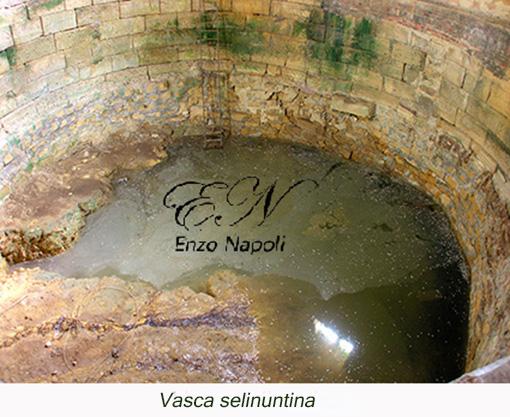 Vasca selinuntina (4)